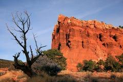 Het Nationale Park van de Capitoolertsader Stock Foto's
