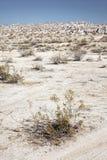 Het Nationale Park van de doodsvallei Royalty-vrije Stock Fotografie