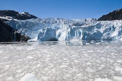 Het Nationale Park van de Fjorden van Kenai stock afbeelding