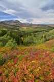 Het Nationale Park van de Gletsjer van het oosten, Montana Royalty-vrije Stock Foto