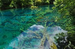 Het Nationale Park van de Jiuzhaivallei Royalty-vrije Stock Foto's