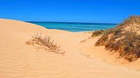 Het Nationale Park van de kaapwaaier, Westelijk Australië stock afbeeldingen