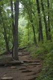 Het nationale park van de Kennesawberg stock afbeelding