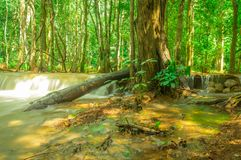 Het nationale park van de landschapswaterval namtok pacharogn, Tak Thailand Stock Foto
