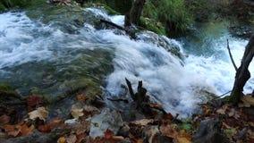 Het Nationale Park van de Meren van Plitvice Kroatië, Europa stock videobeelden