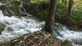 Het Nationale Park van de Meren van Plitvice Kroatië, Europa stock video