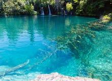 Het Nationale Park van de Meren van Plitvice, Kroatië Royalty-vrije Stock Foto