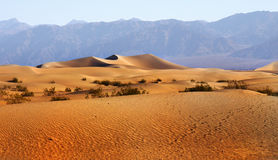 Het Nationale Park van de Vallei van de dood, Californië Stock Foto's