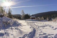 Het Nationale Park van de winterharz, Duitsland Royalty-vrije Stock Foto's