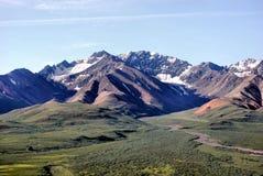 Het Nationale Park van Denali stock foto