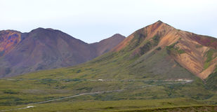Het Nationale Park van Denali, Alaska de V Royalty-vrije Stock Afbeeldingen