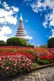 Het nationale park van Doiinthanon in Chiang-MAI Royalty-vrije Stock Foto's
