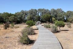 Het Nationale Park van Donana, Spanje stock afbeeldingen