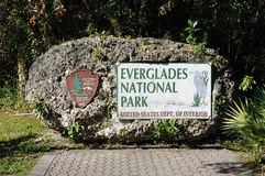 Het Nationale Park van Everglades Stock Foto