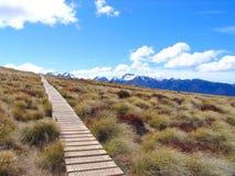 Het Nationale Park van Fiordland (Park3) stock afbeeldingen