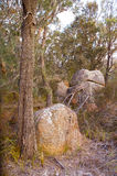 Het Nationale Park van Freycinet Stock Afbeeldingen