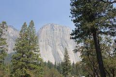 Het Nationale Park van Gr Capitan Yosemite Stock Afbeelding