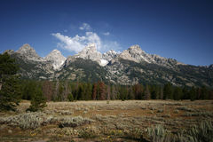 Het Nationale Park van Grand Teton Stock Foto's
