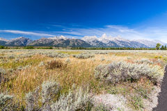 Het Nationale Park van Grand Teton Stock Foto