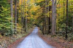 Het Nationale Park van Great Smoky Mountains, Noord-Carolina stock foto's