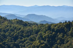 Het Nationale Park van Great Smoky Mountains in Tennessee Stock Foto