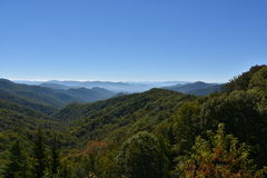 Het Nationale Park van Great Smoky Mountains in Tennessee Royalty-vrije Stock Foto