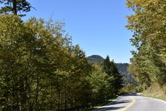 Het Nationale Park van Great Smoky Mountains in Tennessee Stock Foto's