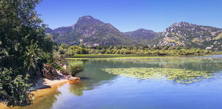 Het Nationale Park van het Skadarmeer, Montenegro royalty-vrije stock foto