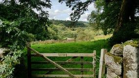 Het nationale Park van Hexworthydartmoor devon het UK Stock Foto's