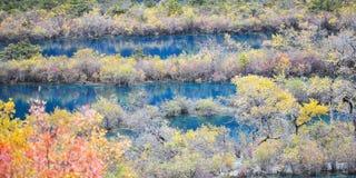 Het Nationale Park van Jiuzhaigou Royalty-vrije Stock Fotografie