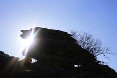 Het Nationale Park van Kakadu Stock Foto