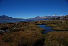 Het nationale Park van Lauca - Chili Stock Foto's