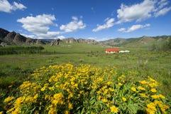 Het Nationale Park van Mongolië Terelj Stock Afbeelding