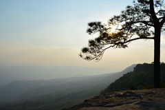 Het Nationale Park van Phukradueng Royalty-vrije Stock Afbeeldingen