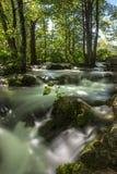 Het Nationale Park van Plitvicemeren - Kroatië Royalty-vrije Stock Foto
