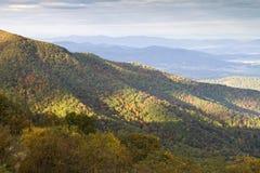 Het Nationale park van Shenandoah in de Herfst Royalty-vrije Stock Foto's