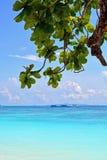 Het Nationale Park van Similaneilanden Royalty-vrije Stock Fotografie
