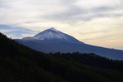 Het Nationale Park van Teide Royalty-vrije Stock Foto's