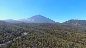 Het Nationale Park van Teide in Tenerife stock video