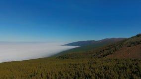 Het Nationale Park van Teide in Tenerife stock videobeelden