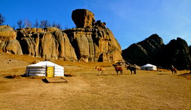 Het Nationale Park van Terelj, Mongolië Stock Afbeeldingen