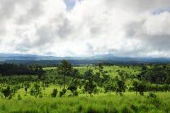 Het Nationale Park van Thungsalaeng Luang Stock Afbeeldingen