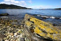 Het Nationale Park van Tierra del Fuego dichtbij Ushuaia, Stock Foto
