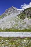 Het Nationale Park van Vanoise Stock Foto