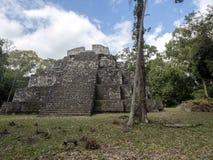 Het Nationale Park van Yaxhanakum Naranjo, Mayan Archeologisch Monument, Guatemala stock afbeelding