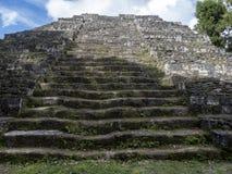 Het Nationale Park van Yaxhanakum Naranjo, Mayan Archeologisch Monument, Guatemala royalty-vrije stock afbeelding