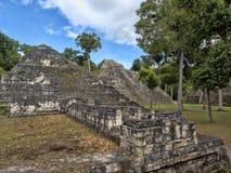 Het Nationale Park van Yaxhanakum Naranjo, Mayan Archeologisch Monument, Guatemala stock foto's