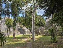 Het Nationale Park van Yaxhanakum Naranjo, Mayan Archeologisch Monument, Guatemala royalty-vrije stock fotografie