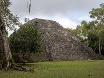 Het Nationale Park van Yaxhanakum Naranjo, Mayan Archeologisch Monument, Guatemala royalty-vrije stock foto's