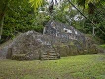 Het Nationale Park van Yaxhanakum Naranjo, Mayan Archeologisch Monument, Guatemala royalty-vrije stock foto